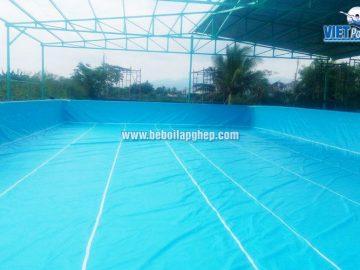 Bể bơi di động Vietpools 10x25m tại Phan Thiết