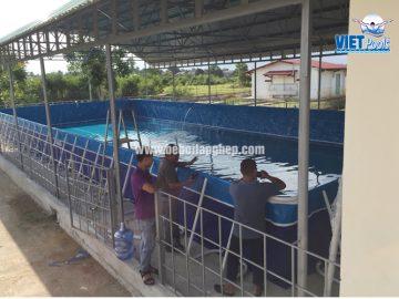 Bể bơi lắp ghép VIETPOOLS tại Gia Lai