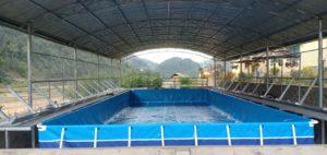 cận cảnh bể bơi lắp ghép thông minh