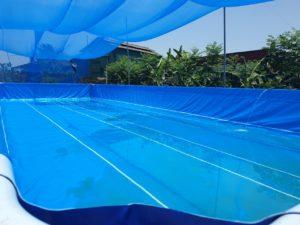 bể bơi lắp ghép thông minh Vietpools
