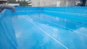 trong lòng bể bơi di động