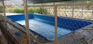 lòng bể bơi lắp ghép thông minh