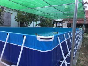 góc bể bơi di động